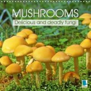 Mushrooms - Delicious and deadly fungi (Wall Calendar 2015 300 ×