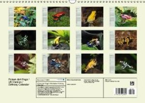 Poison dart frogs / UK-Version / Birthday Calendar (Wall Calenda
