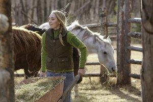 Heartland - Paradies für Pferde, Staffel 7.1