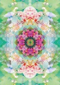 Floral Symmetrics (Poster Book DIN A4 Portrait)