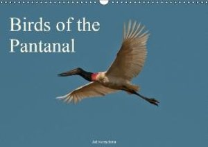 Woehlke, J: Birds of the Pantanal / UK-Version