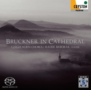 Bruckner in Cathedral