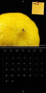 kitchen calendar enjoy your meal (Wall Calendar 2015 300 × 300 m