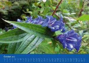 Wild Mountain Flowers of Croatia (Wall Calendar 2015 DIN A3 Land