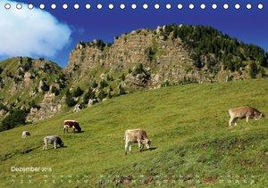 Urlaub auf der Seiser Alm (Tischkalender 2016 DIN A5 quer)