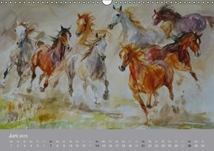 Aniszewski, Z: Mit Pferden durch die Jahreszeiten - Pferdebi