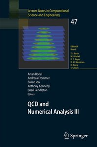 QCD and Numerical Analysis III