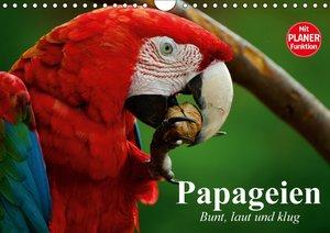 Papageien. Bunt, laut und klug