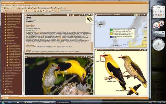 Der große Kosmos Vogelatlas 6.0 - zum Schließen ins Bild klicken
