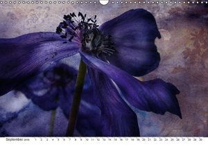Secret garden (Wall Calendar 2015 DIN A3 Landscape)