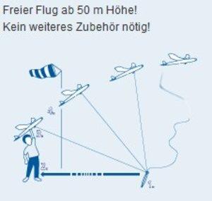Paul Günther 1510 - Segelflugzeug Fynn