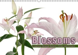 Blossoms A Journey Through Nature\'s Forms and Colours (Wall Cal