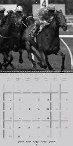 Passion Sport Horses (Wall Calendar 2015 300 &times 300 mm Squar