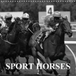 Passion Sport Horses (Wall Calendar 2015 300 &times 300 mm Squar