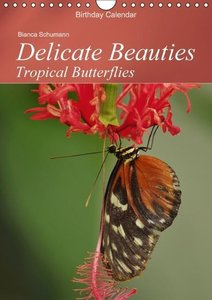 Delicate Beauties Tropical Butterflies