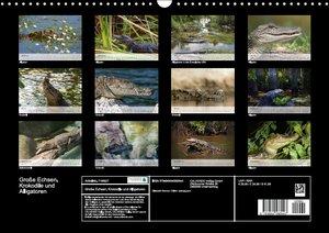 Große Echsen. Krokodile und Alligatoren (Wandkalender 2016 DIN A