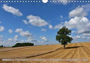 Rund um Moosburg unterwegs (Wandkalender 2017 DIN A4 quer)