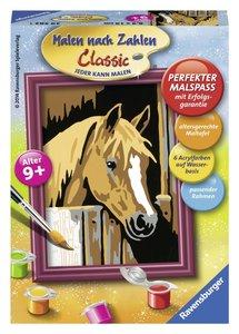 Pferd im Stall. Malen nach Zahlen Serie F