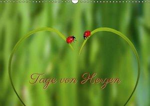 Tage von Herzen (Wandkalender 2016 DIN A3 quer)