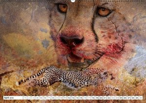 Emotionale Momente: African Dreams (Wandkalender 2016 DIN A2 que