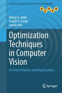 Optimization Techniques in Computer Vision
