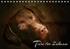 Tiere für Zuhause (Tischkalender 2016 DIN A5 quer)