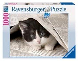 Ravensburger 19256 - Neugieriges Kätzchen, 1000 Teile Puzzle