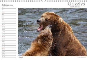 Grizzlys - The Calendar UK-Version (Wall Calendar 2015 DIN A3 La