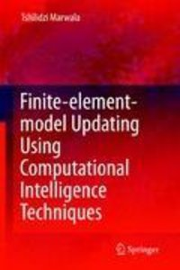 Finite Element Model Updating Using Computational Intelligence T