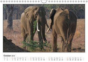 African Elefants (UK-Version) (Wall Calendar 2015 DIN A4 Landsca