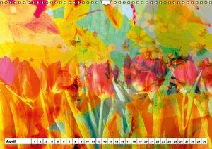 Dreamy Blossom Dance (Wall Calendar perpetual DIN A3 Landscape)