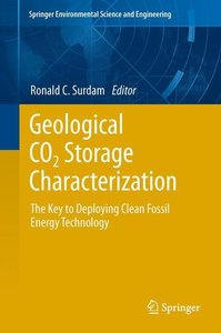Geological CO2 Storage Characterization