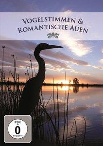Vogelstimmen & Romantische Auen
