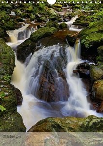 Alles im Fluss - Schwarzwaldwasser (Wandkalender 2016 DIN A4 hoc