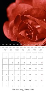 the world is macro (Wall Calendar 2015 300 × 300 mm Square)