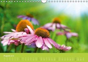 Gartenidylle (Wandkalender 2016 DIN A4 quer)