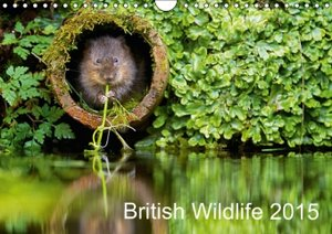 British Wildlife 2015 (Wall Calendar 2015 DIN A4 Landscape)