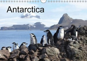 Antarctica (UK - Version) (Wall Calendar 2015 DIN A4 Landscape)
