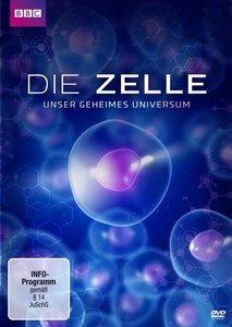 Die Zelle-Unser Geheimes Universum