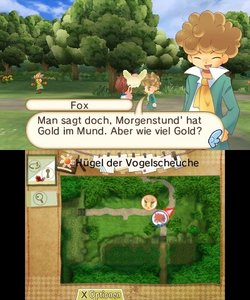 Hometown Story - The Family of Harvest Moon (Nintendo 3DS)