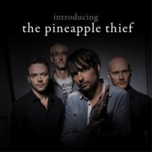 Introducing The Pineapple Thief