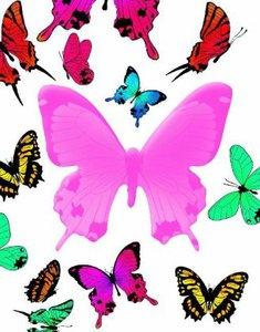 Notizbuch Schmetterling
