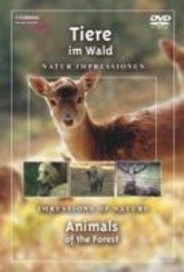 Tiere Im Wald-DVD