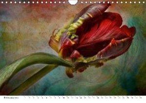 Secret garden (Wall Calendar 2015 DIN A4 Landscape)