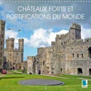 Châteaux forts et fortifications du monde (Calendrier mural 2015
