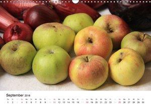 Alte Apfelsorten (Wandkalender 2016 DIN A3 quer)
