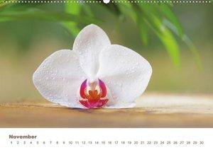 Wellness für die Seele (Wandkalender 2013 DIN A2 quer)