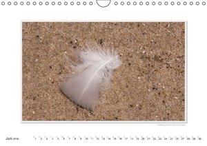 Emotionale Momente: Texel - Insel im Wattenmeer. (Wandkalender 2
