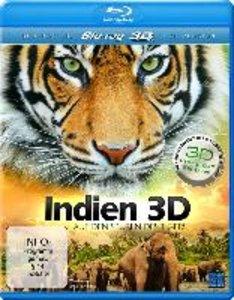 Indien 3D - Auf den Spuren des Tigers
