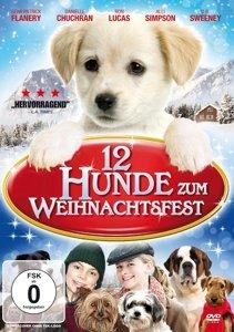12 Hunde Zum Weihnachtsfest!